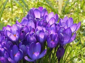 Ben jij al klaar voor jouw lentegarderobe?